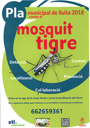 mosquito-tigre-315-banner-diaridigtal.es
