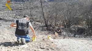 diaridigital.es-incendio-forestal-carcaixent2