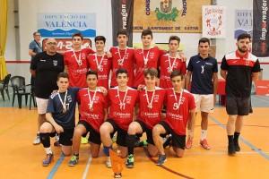 chicos-voleibol-diaridigital.es