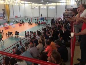 pabellon-voleibol-xativa-diaridigital.es