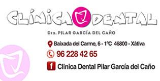 banner-pilar-315-160-diaridigital.es