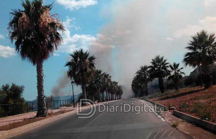 incendio-llanera3-diaridigital.es