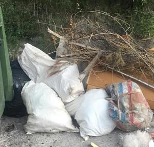 bixquert-basura-4-diaridigital.es