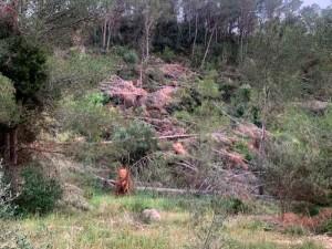 zona verde xativa-2-diaridigital.es